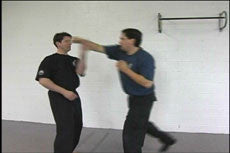 Systema Hand to Hand DVD 4