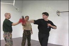 Systema Hand to Hand DVD 2