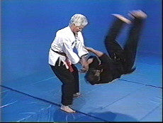 Hapkido 11 DVD Set by Bong Soo Han