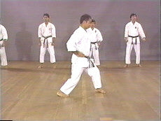 Shotokan Karate Basics DVD 7