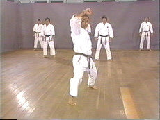 Shotokan Karate Basics DVD 1