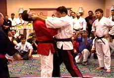 Awesome Pressure Point Knockouts DVD by George Dillman 5