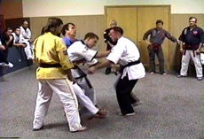 Awesome Pressure Point Knockouts DVD by George Dillman 2