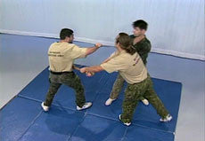 Systema: Defense Against Weapons DVD with Vladimir Vasiliev 2