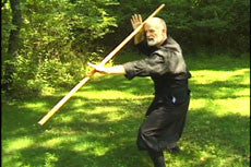Toshindo Bojutsu Long Staff Kihon DVD by Stephen Hayes 4