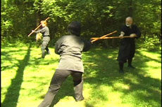 Toshindo Bojutsu Long Staff Kihon DVD by Stephen Hayes 3