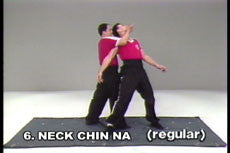 Analysis of Shaolin Chin Na DVD with Dr. Yang, Jwing Ming 4