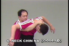 Analysis of Shaolin Chin Na DVD with Dr. Yang, Jwing Ming 2