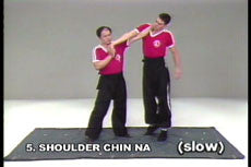 Analysis of Shaolin Chin Na DVD with Dr. Yang, Jwing Ming 1