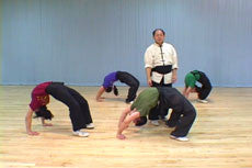 Shaolin Fundamental Training DVD with Dr. Yang, Jwing Ming 4