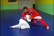 BJJ Ultimate Lessons 11 DVD Set by Gustavo Froes 4