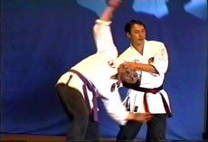 Live Seminar with Leon Jay at Dillman Karate Intl DVD 4