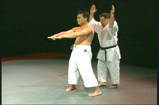 Goju Ryu Technical Series Part 2 DVD 3