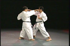 Goju Ryu Technical Series Part 4 DVD 4
