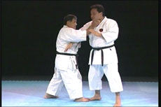 Goju Ryu Technical Series Part 5 DVD 5