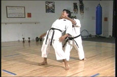 Goju Ryu Technical Series Part 5 DVD 4