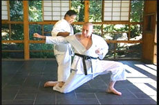 Goju Ryu Technical Series Part 6 DVD 5