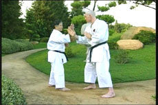 Goju Ryu Technical Series Part 6 DVD 4