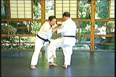 The Karate of Choki Motobu DVD by Chosei Motobu 4