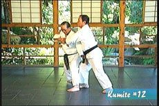 The Karate of Choki Motobu DVD by Chosei Motobu 5