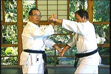The Karate of Choki Motobu DVD by Chosei Motobu 3