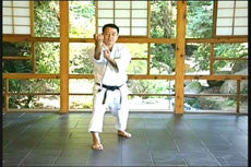 Matsubayashi Shorin Ryu Karate DVD Vol 2 4