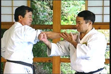 Matsubayashi Shorin Ryu Karate DVD Vol 2 2