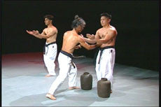 Pangai Noon Karate DVD 1: Sanchin by Shinyu Gushi 3