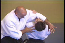 Dynamic Aikido DVD with Angel Alvarez 1