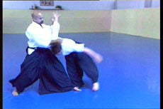 Dynamic Aikido DVD with Angel Alvarez 2