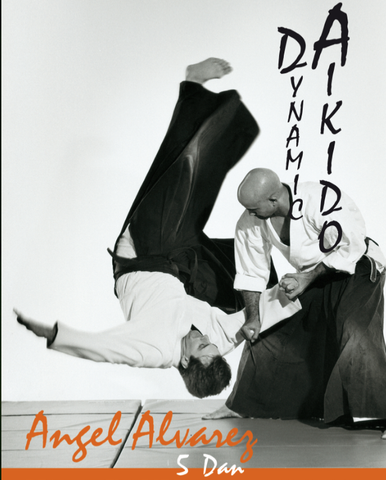 Dynamic Aikido DVD with Angel Alvarez 5