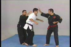 Kyusho Jitsu DVD with Evan Pantazi 3