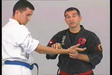 Kyusho Jitsu DVD with Evan Pantazi 4