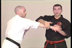Kyusho Jitsu: Attacks to Points on the Head DVD with Evan Pantazi 2