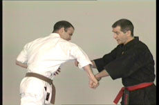 Kyusho Jitsu DVD 2 with Evan Pantazi 3