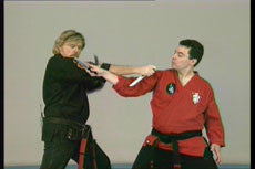 X-Treme Kenpo DVD with Larry Tatum 4