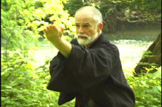 Meditation for Martial Artists DVD with Stephen Hayes 4