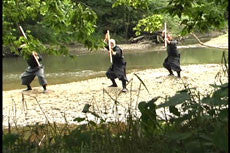 To Shin Do Bojutsu 4 DVD Set with Stephen Hayes 3