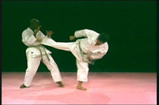 Winning Competition Karate DVD 3: Kicking with Hideharu Igaki 2