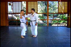 Encylopedia of Goju Ryu Vol 2 DVD by Morio Higaonna  5