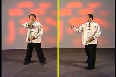 Essence of Taiji Qigong DVD with Dr Yang, Jwing Ming 4
