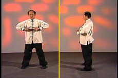 Essence of Taiji Qigong DVD with Dr Yang, Jwing Ming 3