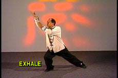 Essence of Taiji Qigong DVD with Dr Yang, Jwing Ming 1