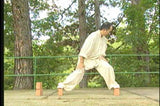 Tai Chi Pushing Hands DVD 1 with Dr Yang, Jwing Ming - Budovideos Inc
