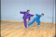 Baguazhang 3 Vol DVD with Shou-Yu Liang 4