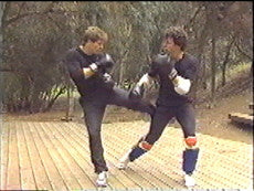 Jeet Kune Do 7 DVD Set by Paul Vunak 2