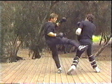 Jeet Kune Do 7 DVD Set by Paul Vunak 3
