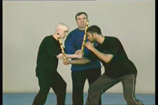 Wing Tsun Alliance DVD 2