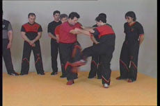 Wing Tsun Re-Evolution DVD with Victor Gutierrez 3