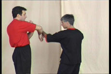 Wing Tsun DVD by Leung Ting 4